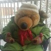 stuffed bear wearing parka and scarf sitting on a chair outside in snow