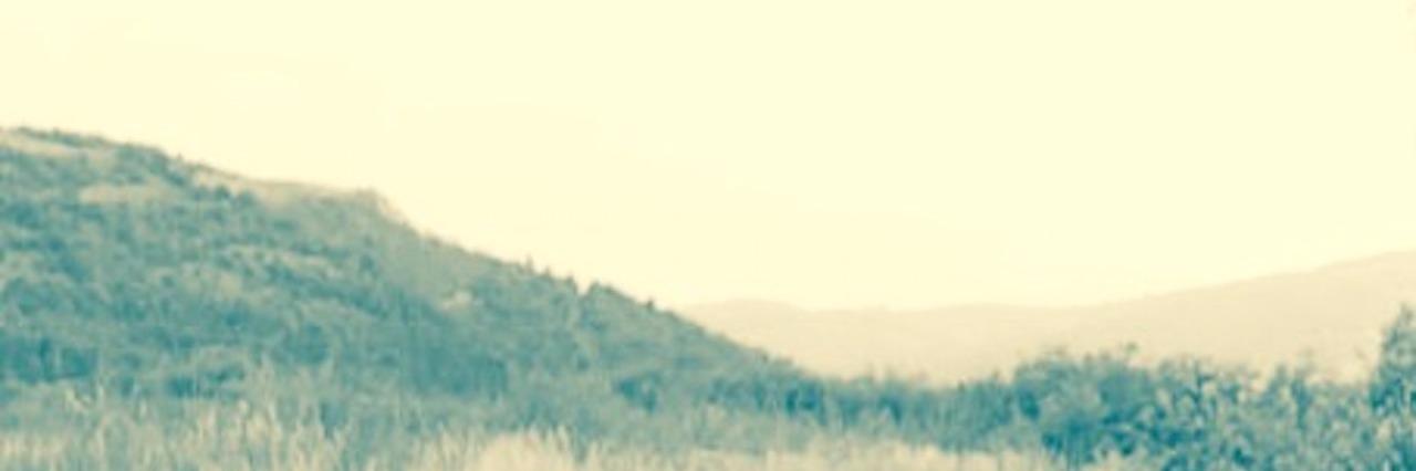 hazy field