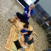 Mother crying and holding a hand to her mouth as her son lies against his new service dog