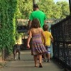 dad and two kids walking down path with dog, back view