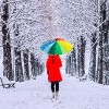 woman with colorful umbrella walking in the snow