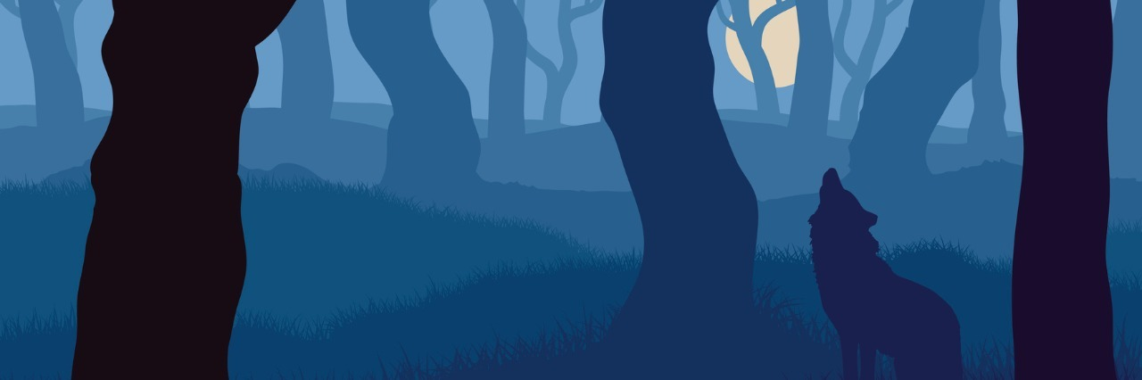 Vector illustration of wolf howling at moon in night forest.