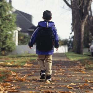 Boy walking along leaf-covered path
