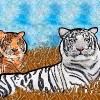 artwork of two orange tigers and one white tiger laying in grass