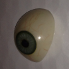 These are several examples of scleral shell eye prosthetics I have worn over the years. Each one costs over $3,000 so why wouldn't I keep them. The left one was my second manufactured eye prosthetic that I wore throughout elementary school. The ones beside it and the one I wear now are handmade, and fit and look better than the manufactured eyes.