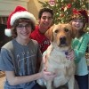 The author's children and family dog posing next to the Christmas tree