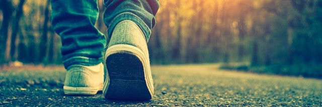 Close-up of person's shoe as they walk on a tree-lined road