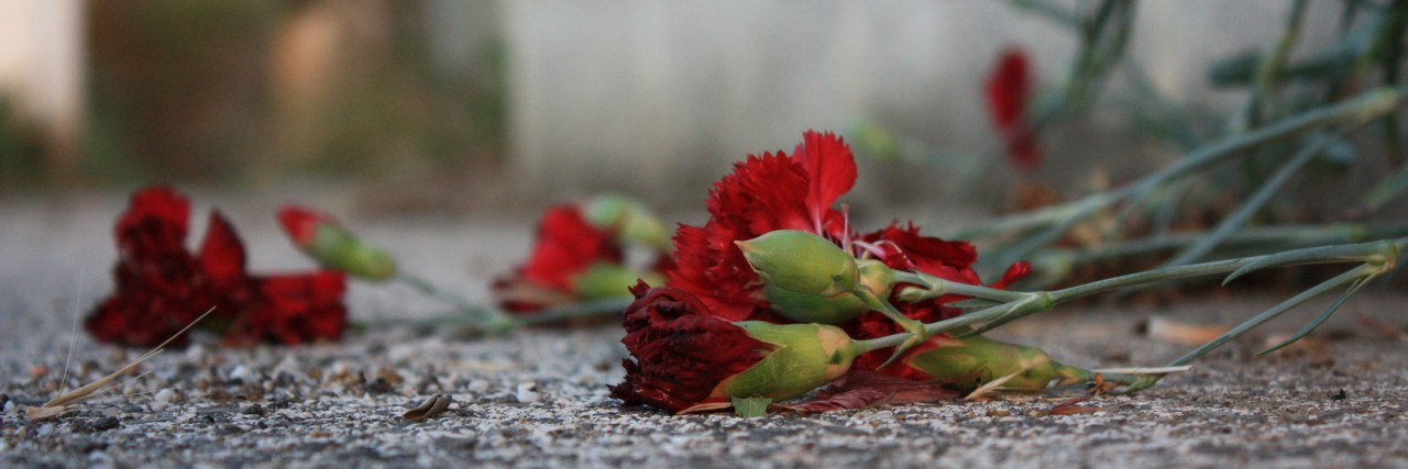 Roses dropped on the ground.