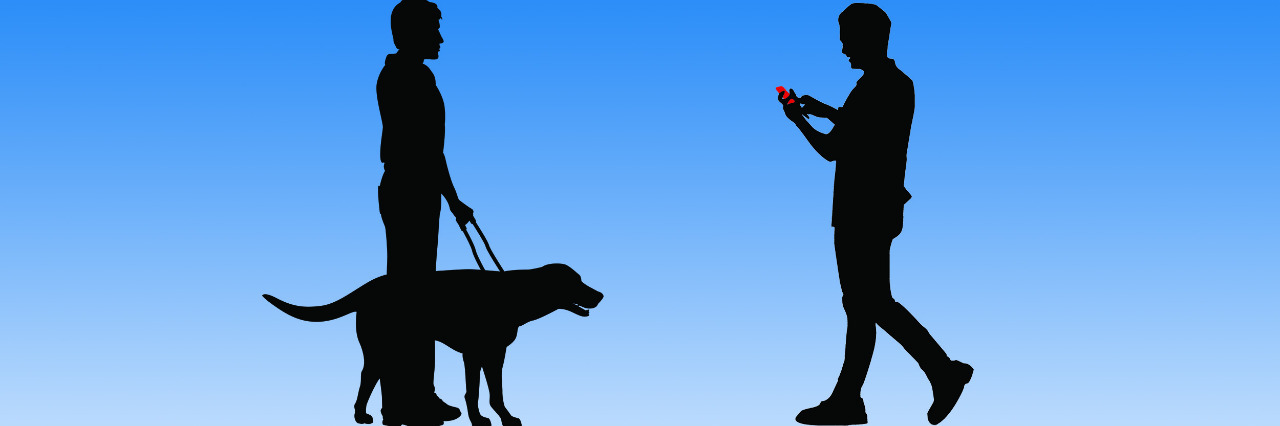 Person on a cell phone about to walk into a guide dog and handler.