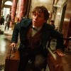 "A screenshot from ""Fantastic Beasts,"" a man holding a briefcase crouches and looks up"