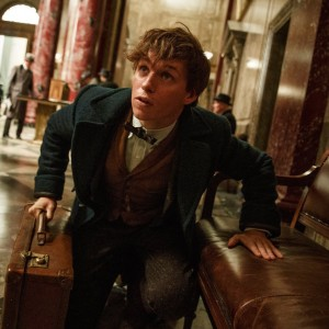 """A screenshot from """"Fantastic Beasts,"""" a man holding a briefcase crouches and looks up"""