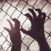 Female hand holding on chain link fence