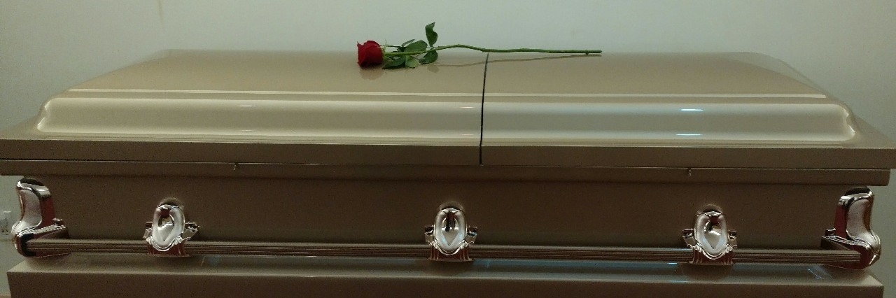 a casket with a single rose on top