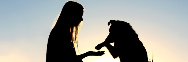 Woman and her dog shaking hands silhouette.