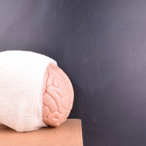 a model brain wrapped in a white bandage