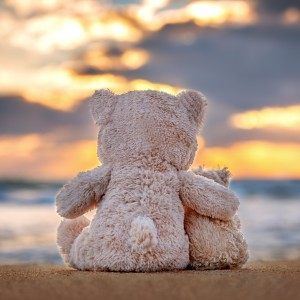 two teddy bears sitting at the beach