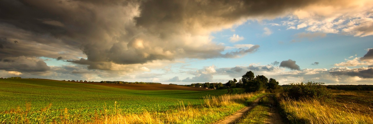 a storm rolling across a field