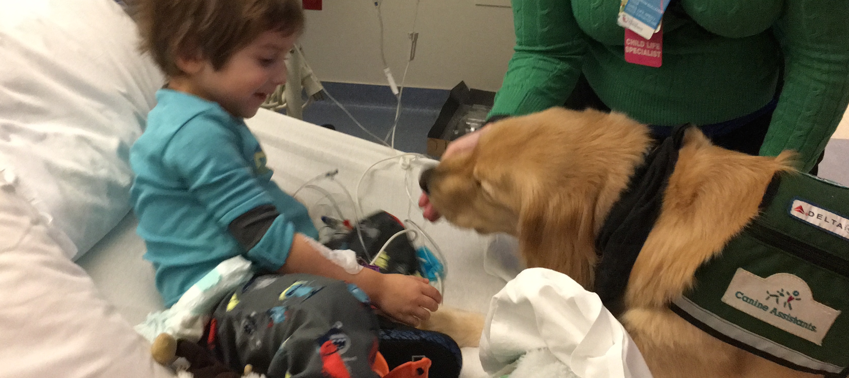 cohen and chevy the therapy dog