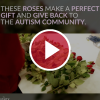 'These Roses Make a Perfect Gift and Give Back to the Autism Community'