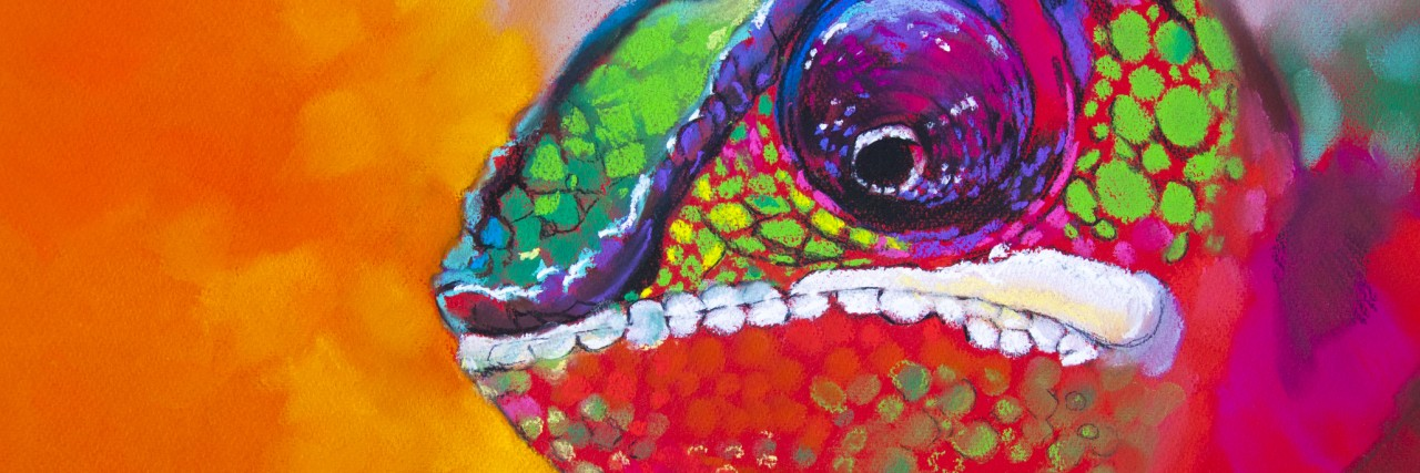 Colorful chameleon on a tree.