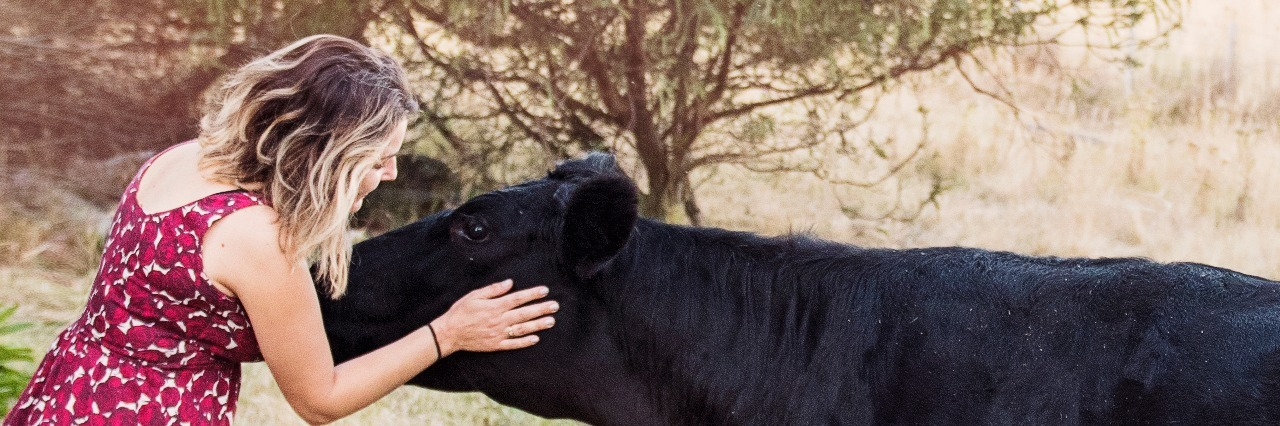 woman in dress petting a black cow