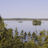lake with forrest surrounding