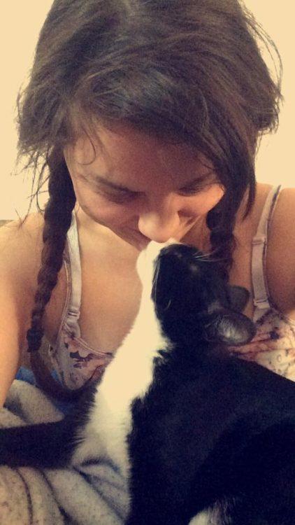 Alexis cat