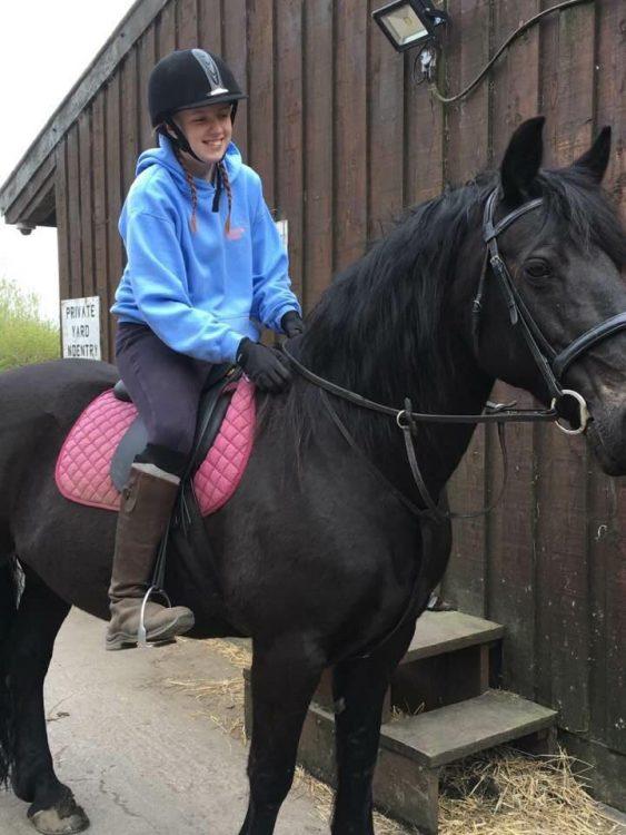 bella horse