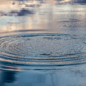 circular ripples in a lake