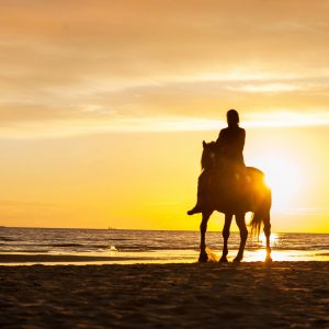 Horse riding at the beach at sunset.