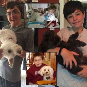 Collage of the author's two sons holding dogs, with photos of one of the author's sons at younger ages next to the family dog