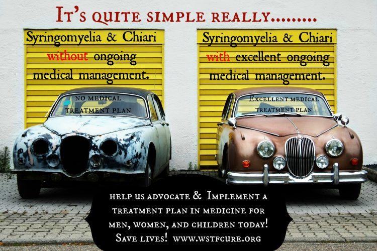 meme that describes syringomyelia and chiari malformation like cars