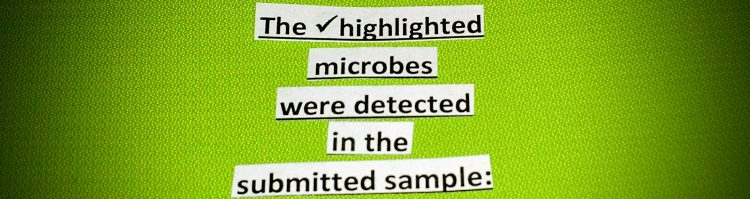the highlighted microbes were detected in the committed sample