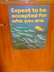 Poster on wooden door that says [Expect to be accepted for who you are] with an illustration of a school of fish with one fish that appears different from the others