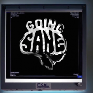"A screenshot from the ""Going Sane"" documentary"