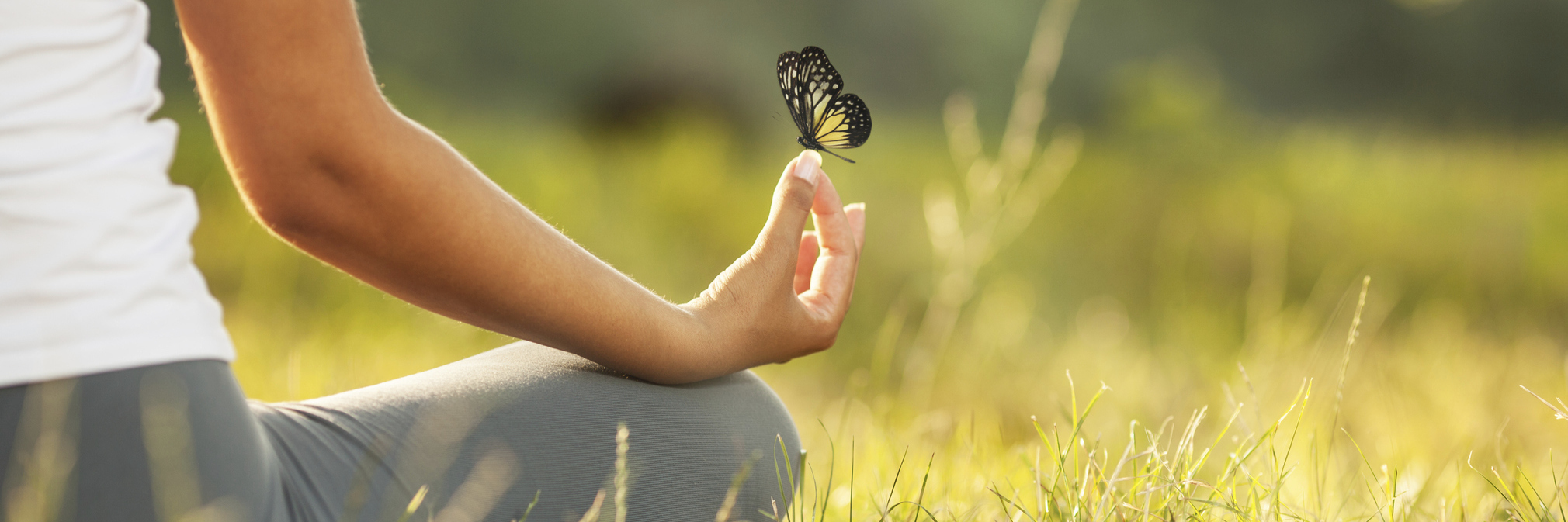 woman meditating in a field with a butterfly on her hand