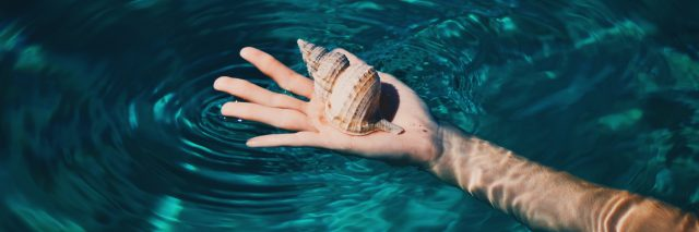 person's hand in clearwater holding shell concept for letting go