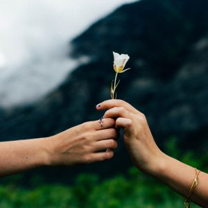 one hand giving flower to second hand outstretched in front of mountains