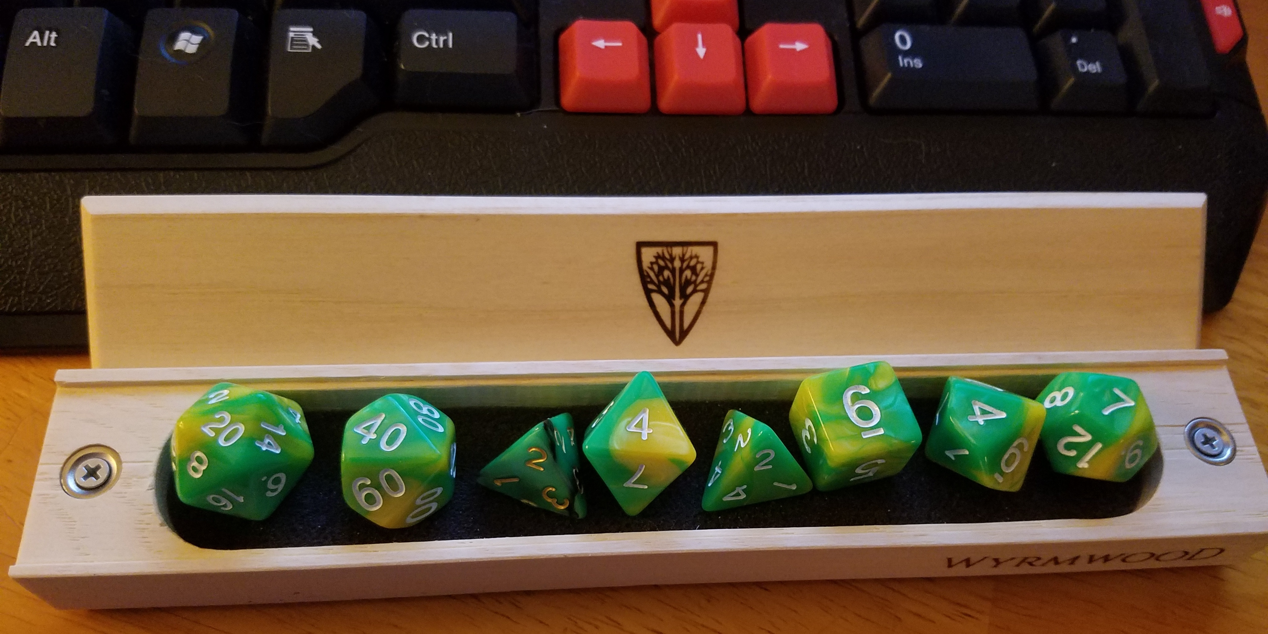 Playing Dungeons and Dragons to Distract From Chronic Illness | The