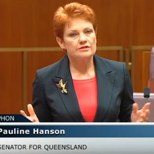 Pauline Hanson speaking to Parliament.