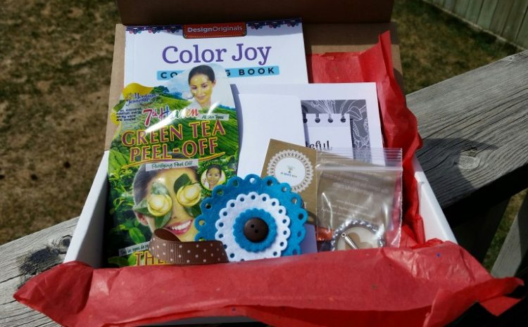 be brave box containing face mask, coloring book,pins