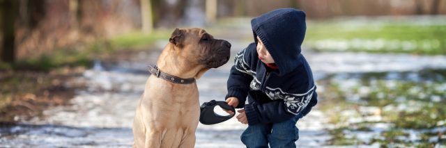 Little boy with his dog in a park.