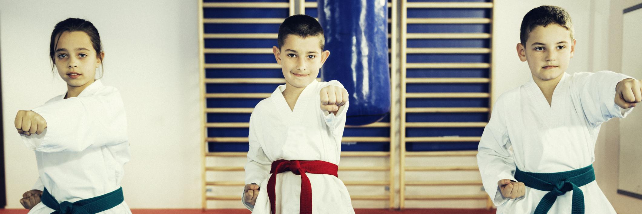 Children in Taekwondo.