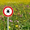 tick sign in flower meadow background