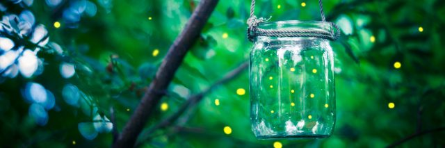 Fireflies flying around, some in a jar hanging off a tree branch.