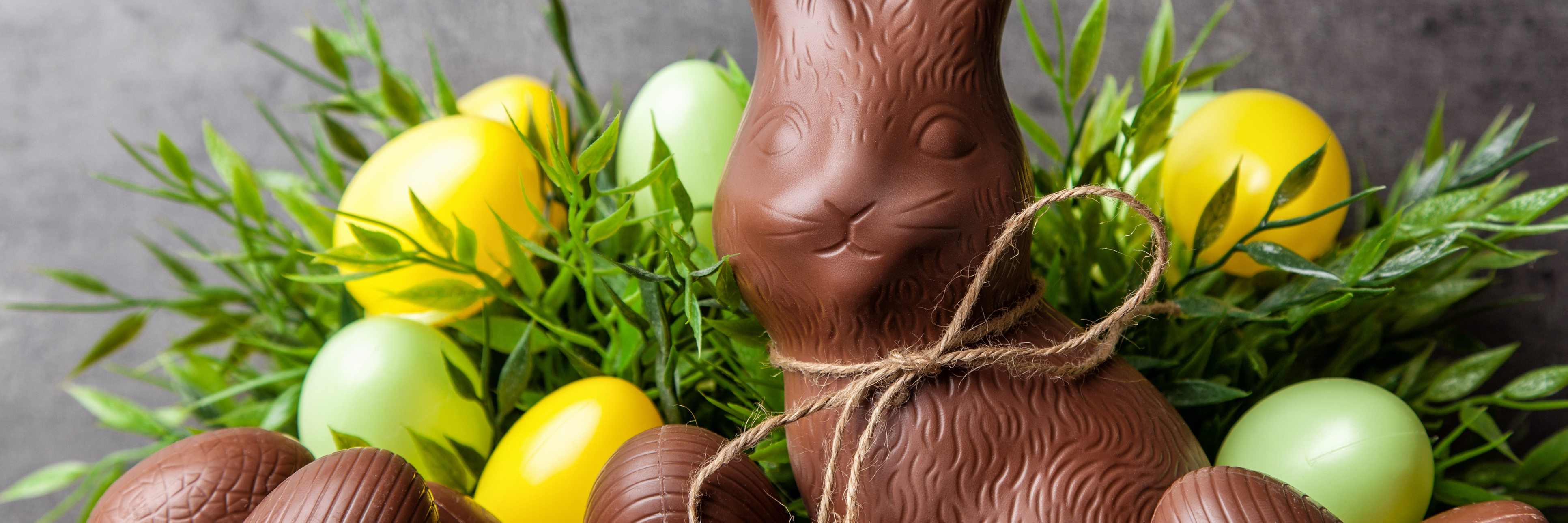 traditional chocolate easter bunny surrounded by easter eggs with string tied into a bow around neck