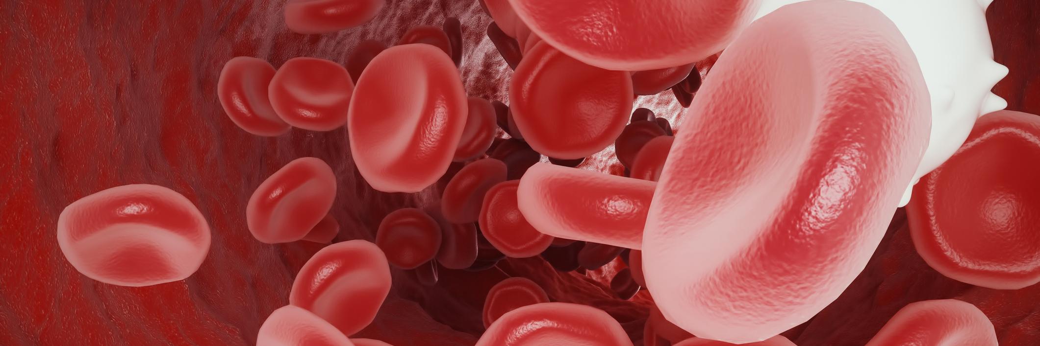 Summary -> White Blood Cells Leukocytes In Urine But No Infection