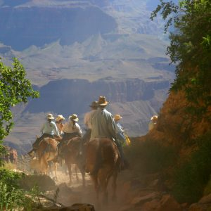 people riding horses through grand canyon