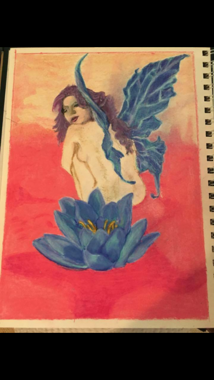 A fairy with blue wings, sitting behind a flower. Drawn by the writer.