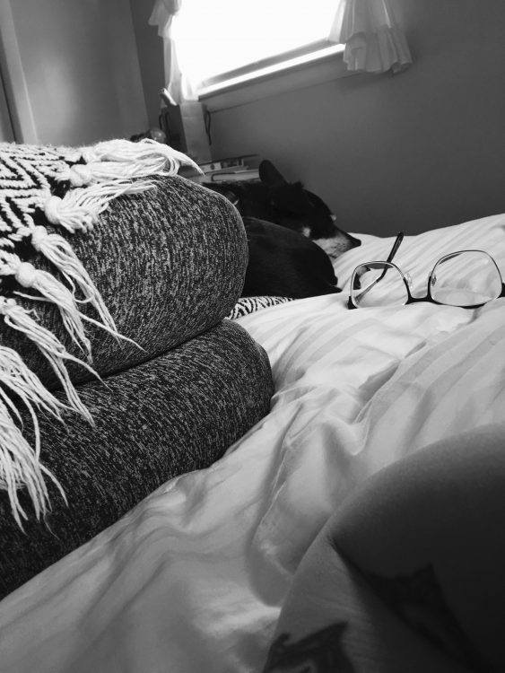 woman and her dog curled up in bed